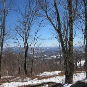 Blue Spark Creative, Author at Great Western Catskills